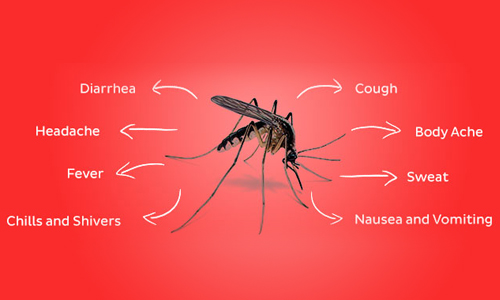 malaria-symphtoms-welltech-foundation-hyderabad